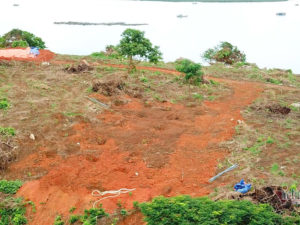 Đảo nguyên sinh ở Móng Cái bị cạo trọc